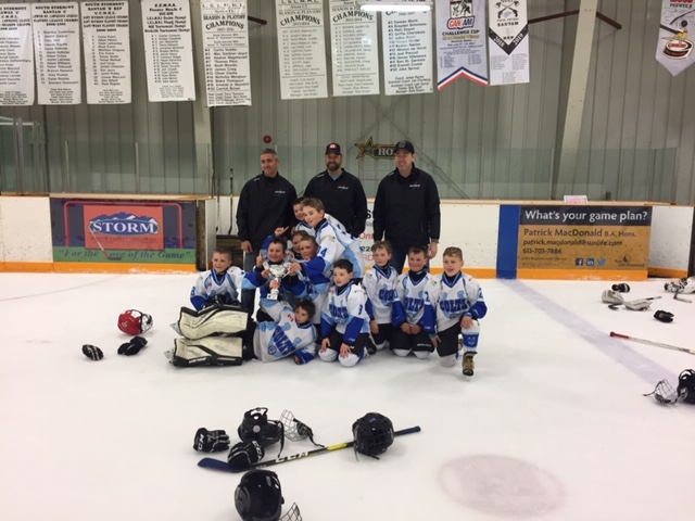Own The Ice 2012 D2 Champs
